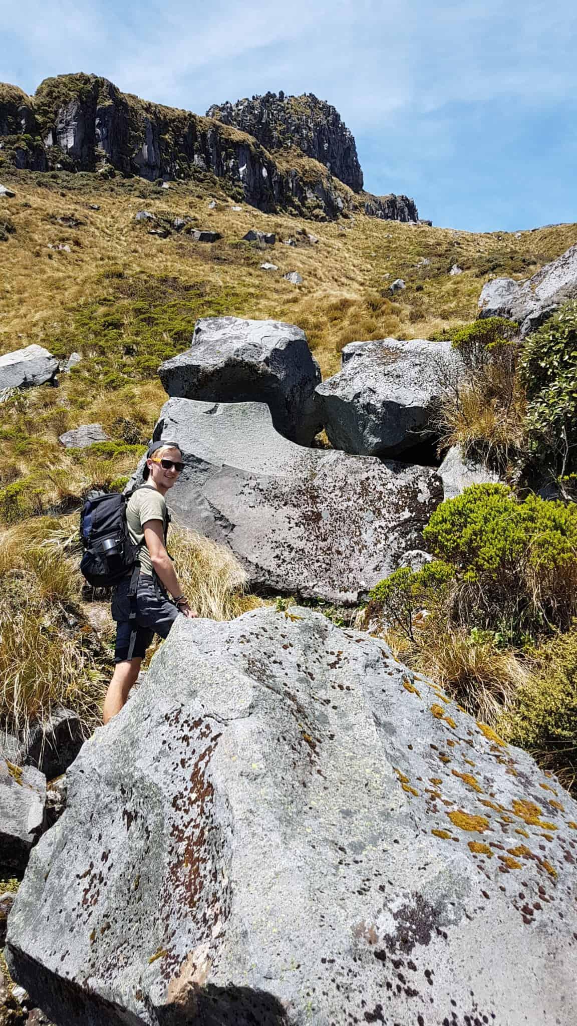 Nouvelle-Zélande, rando Holly Hut Track avec vue sur le Mont Taranaki ❤ 7