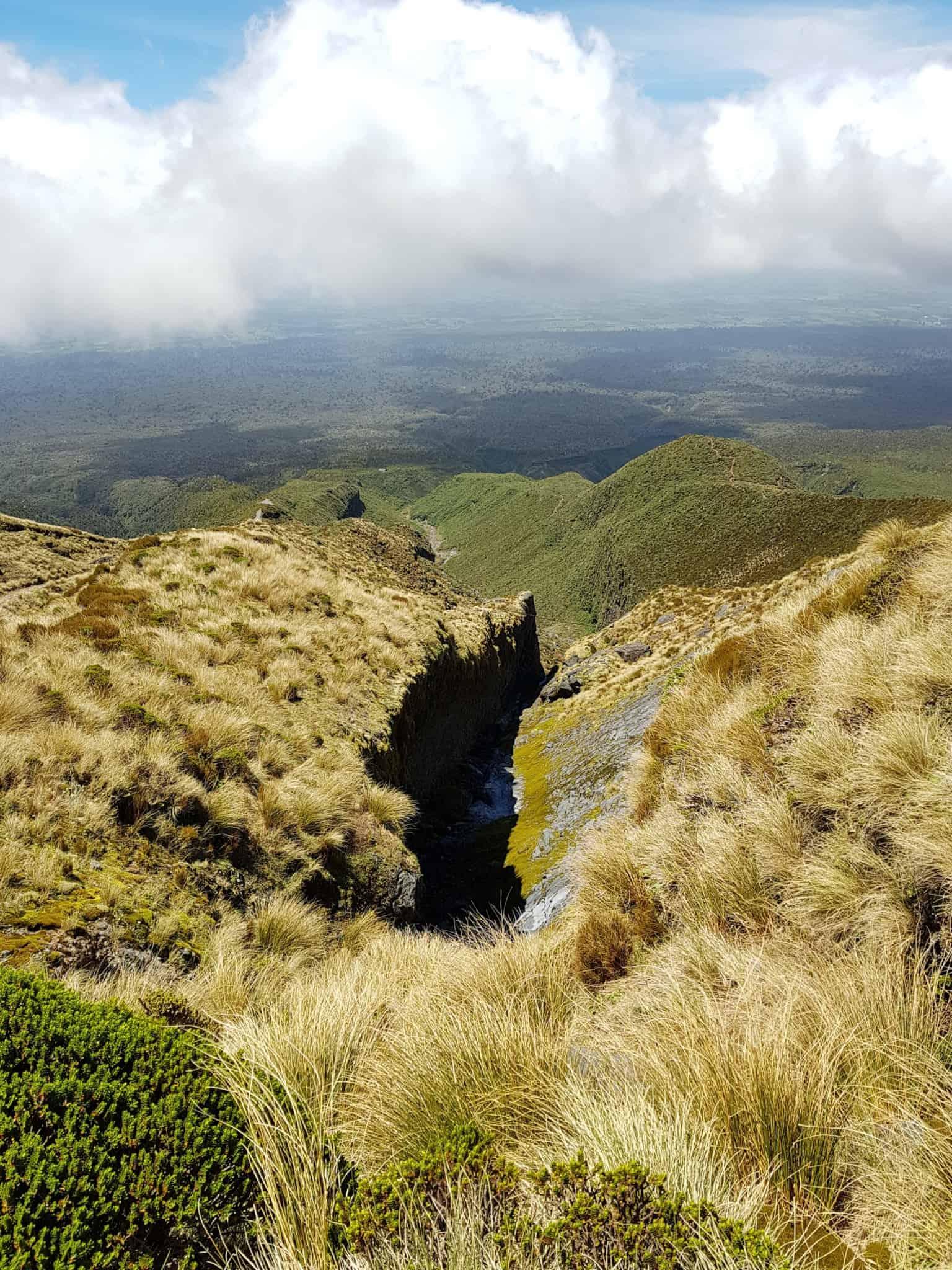 Bilan de six mois de PVT en Nouvelle-Zélande ✍ 2