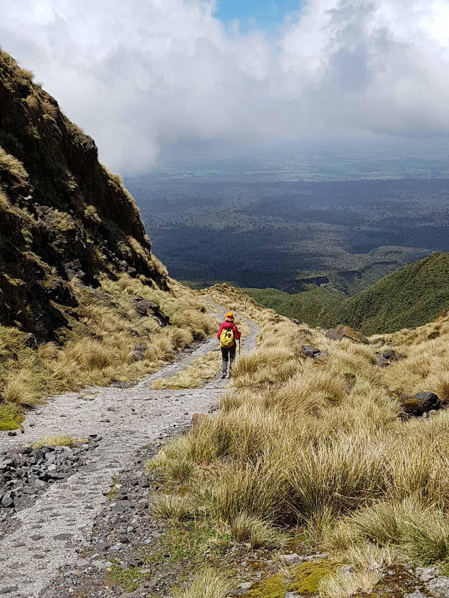 Nouvelle-Zélande, rando Holly Hut Track avec vue sur le Mont Taranaki ❤ 19