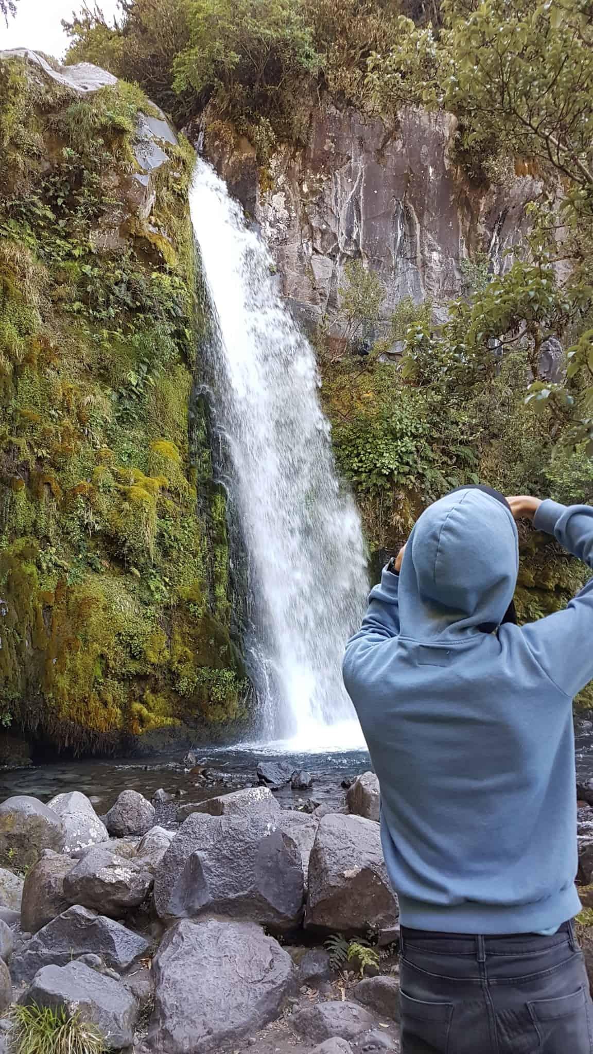 Nouvelle-Zélande, quand ta randonnée se transforme en chasse au trésor dans la jungle 🕵️♂️ 8