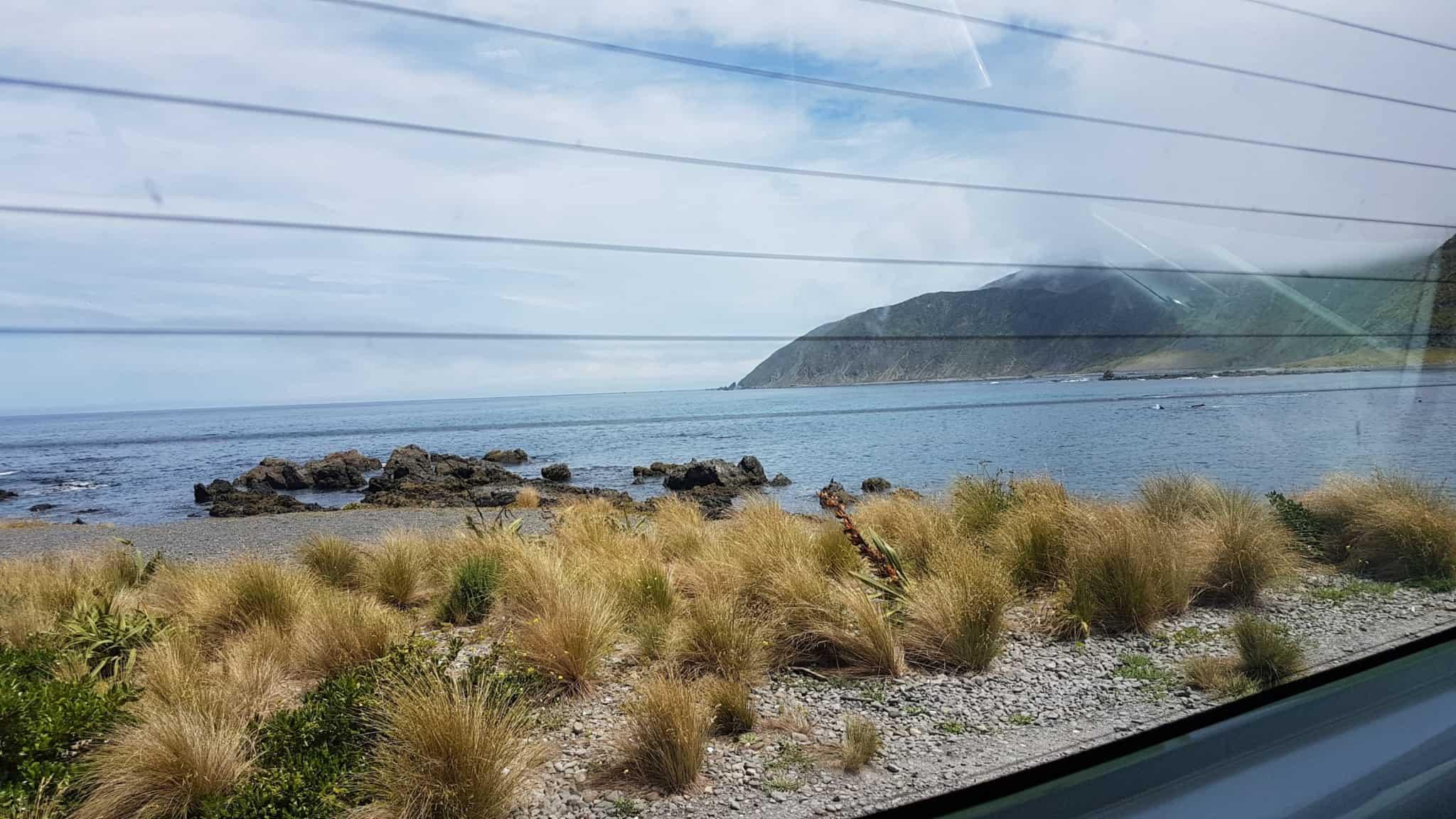 Nouvelle-Zélande, notre arrivée dans la capitale 🏬 8