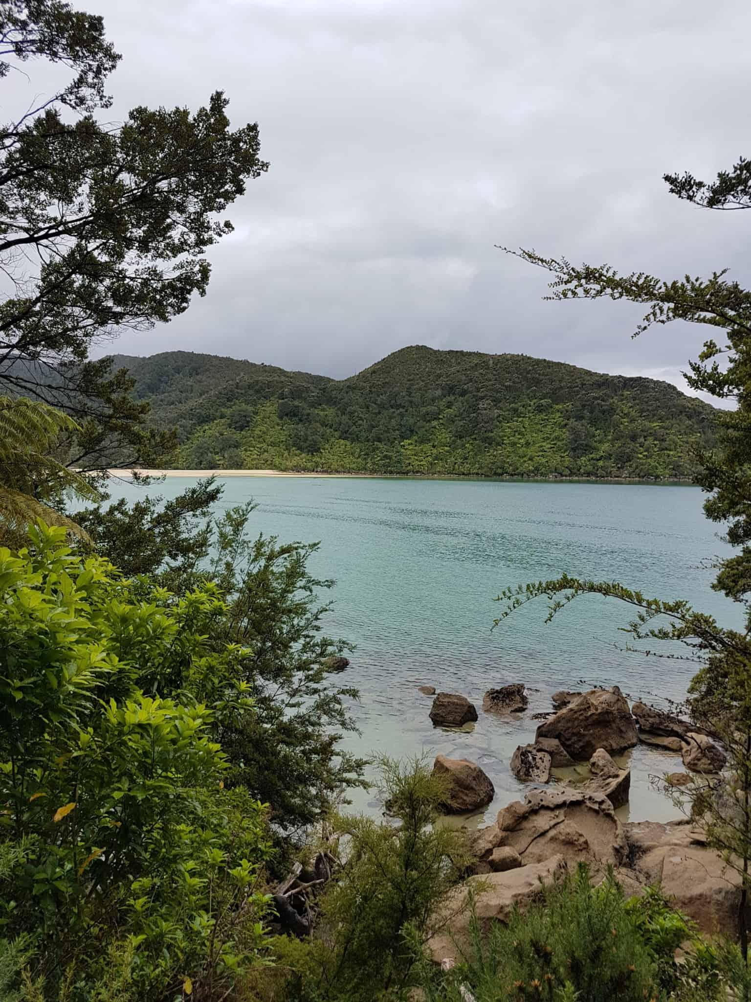 Nouvelle-Zélande, 24 km de randonnée sous la pluie dans le parc d'Abel Tasman 🌧 13