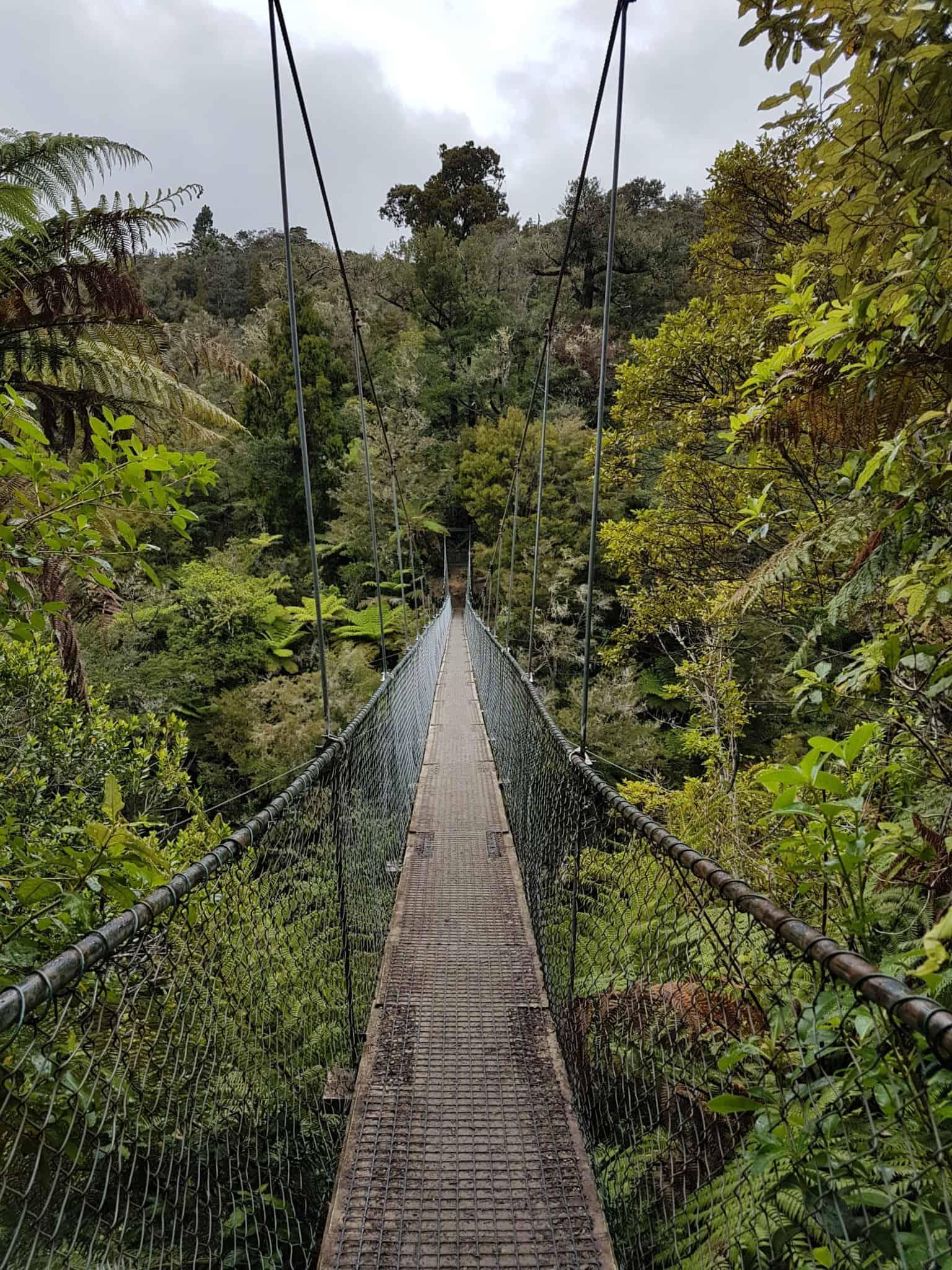Nouvelle-Zélande, 24 km de randonnée sous la pluie dans le parc d'Abel Tasman 🌧 17