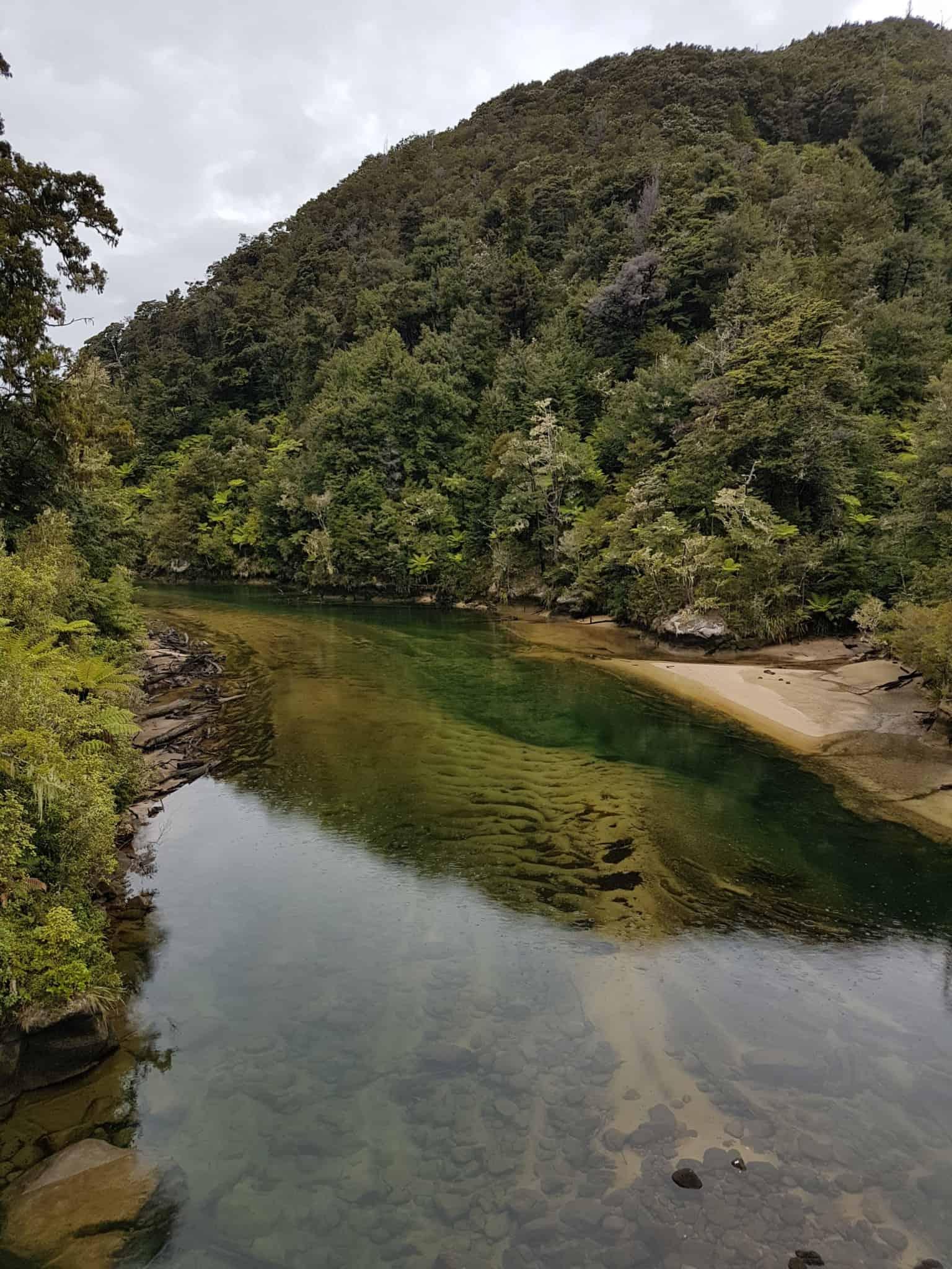 Nouvelle-Zélande, 24 km de randonnée sous la pluie dans le parc d'Abel Tasman 🌧 20