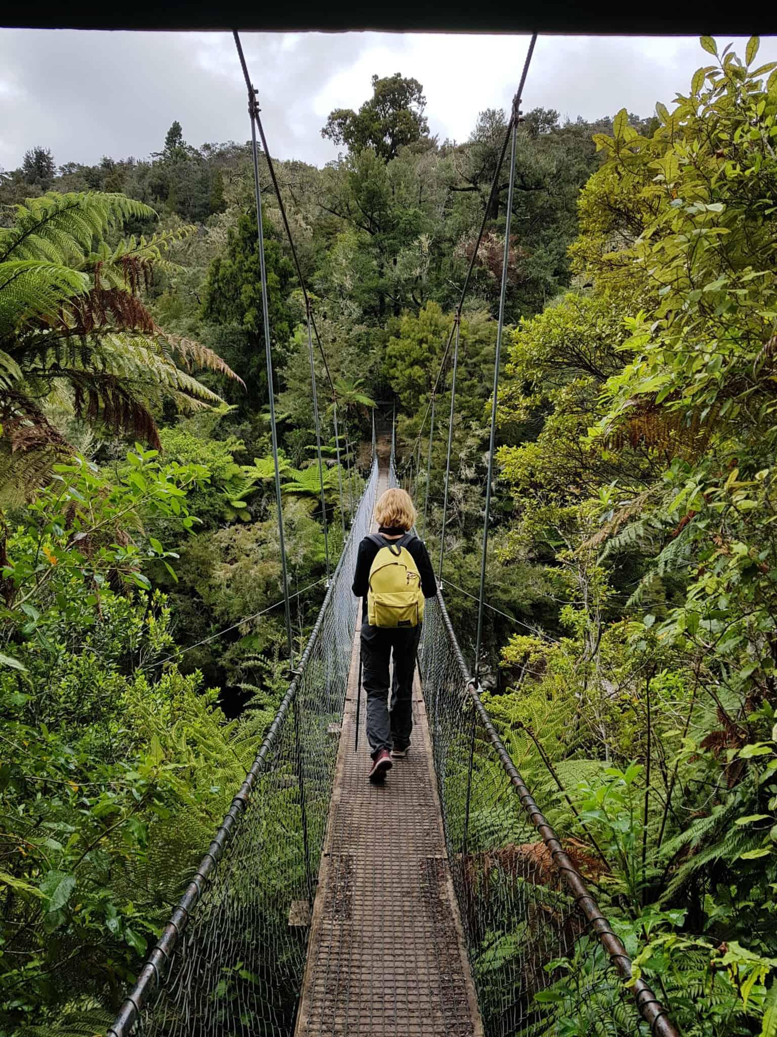 Nouvelle-Zélande, 24 km de randonnée sous la pluie dans le parc d'Abel Tasman 🌧 18