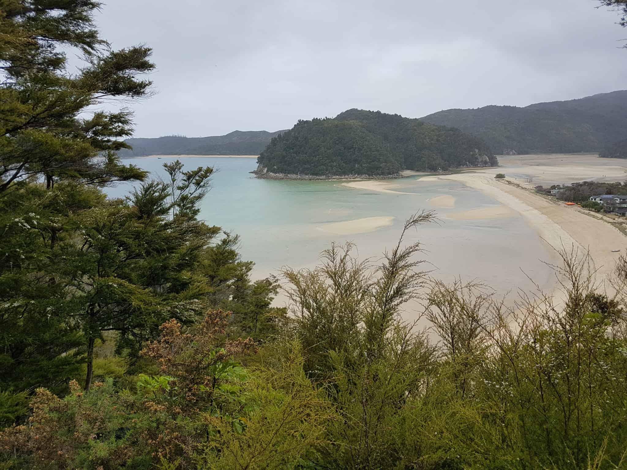 Nouvelle-Zélande, 24 km de randonnée sous la pluie dans le parc d'Abel Tasman 🌧 15
