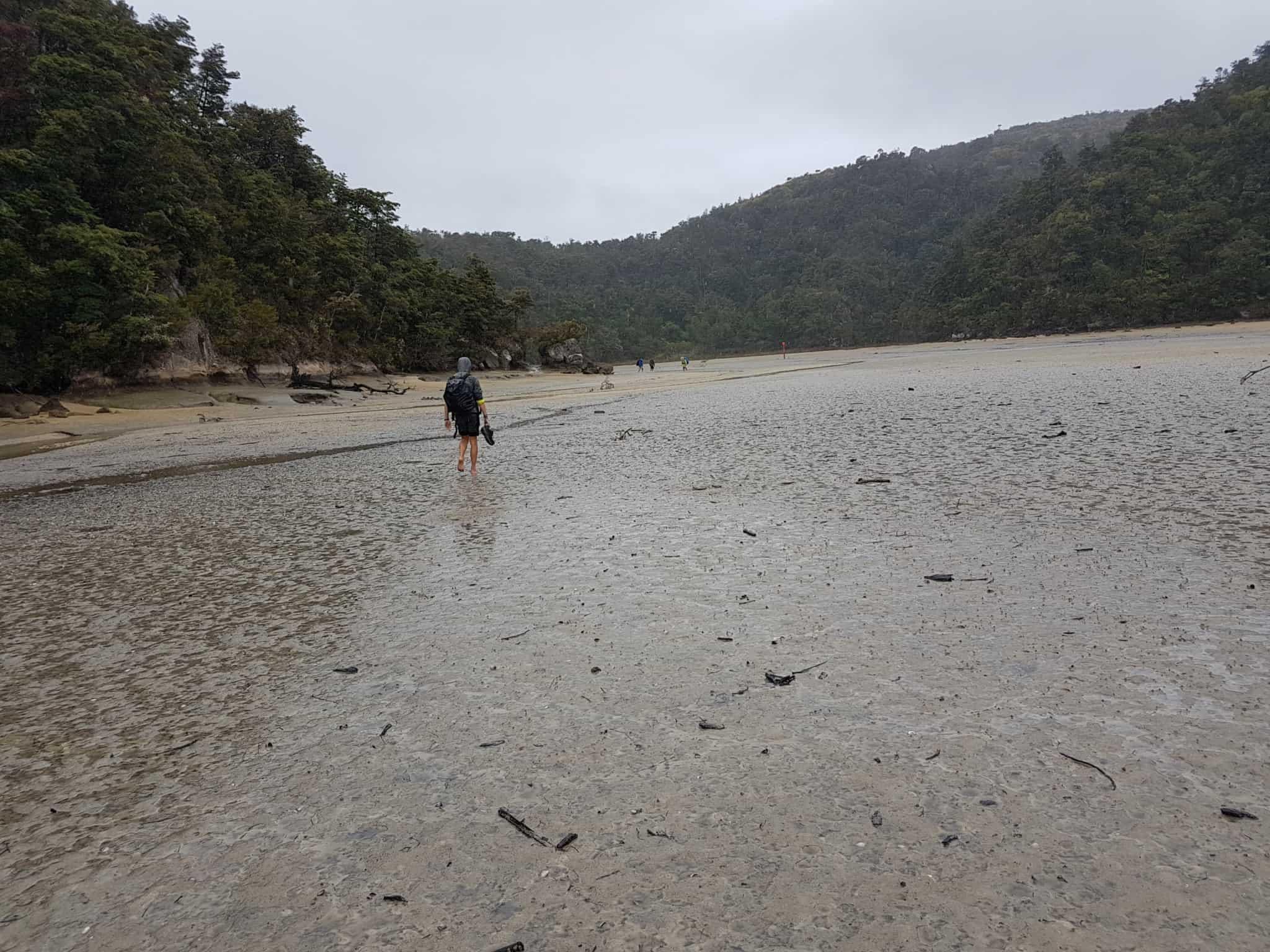 Nouvelle-Zélande, 24 km de randonnée sous la pluie dans le parc d'Abel Tasman 🌧 26