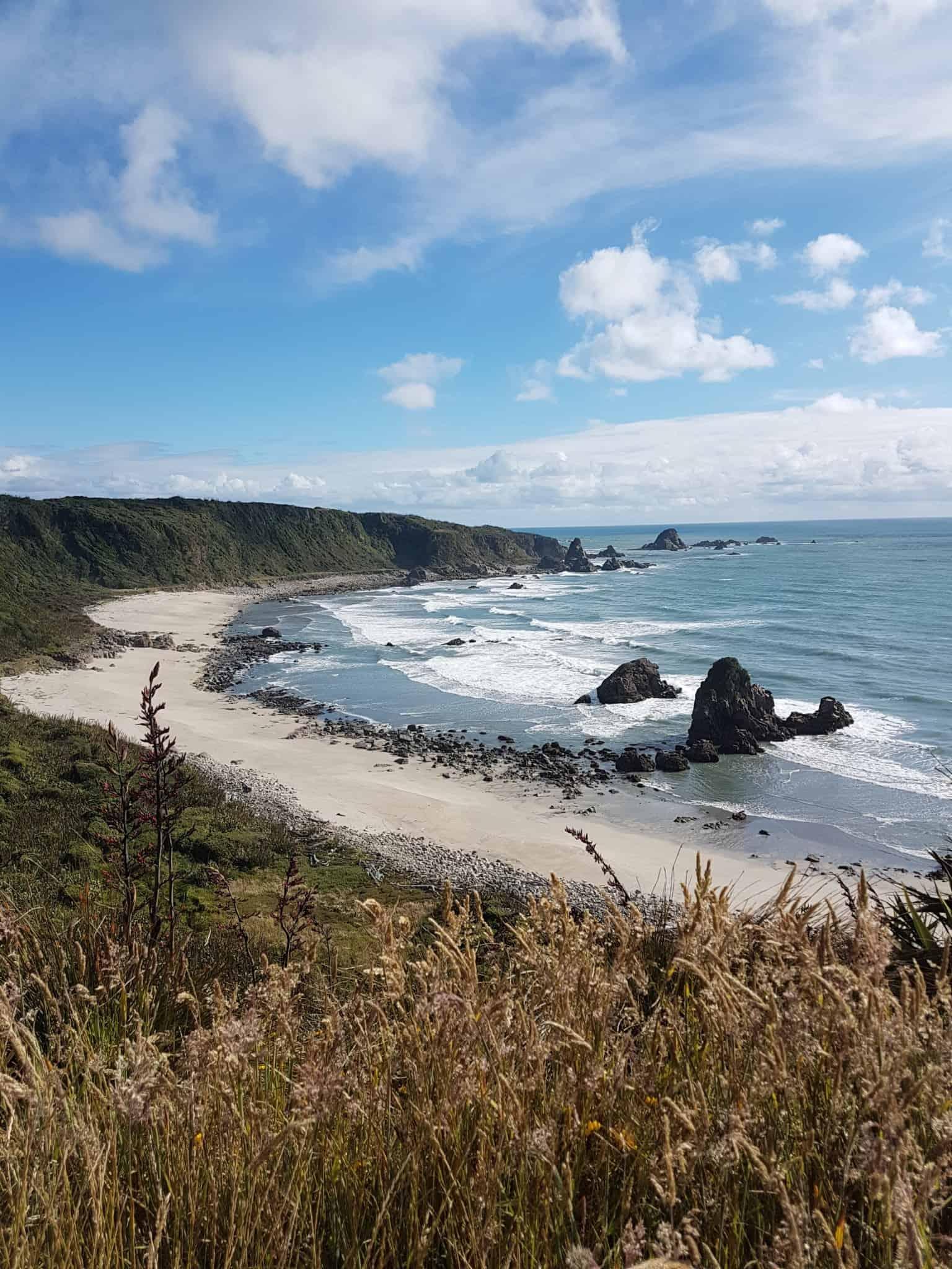 Nouvelle-Zélande, le Cap Foulwind et sa côte sauvage 🌿 16