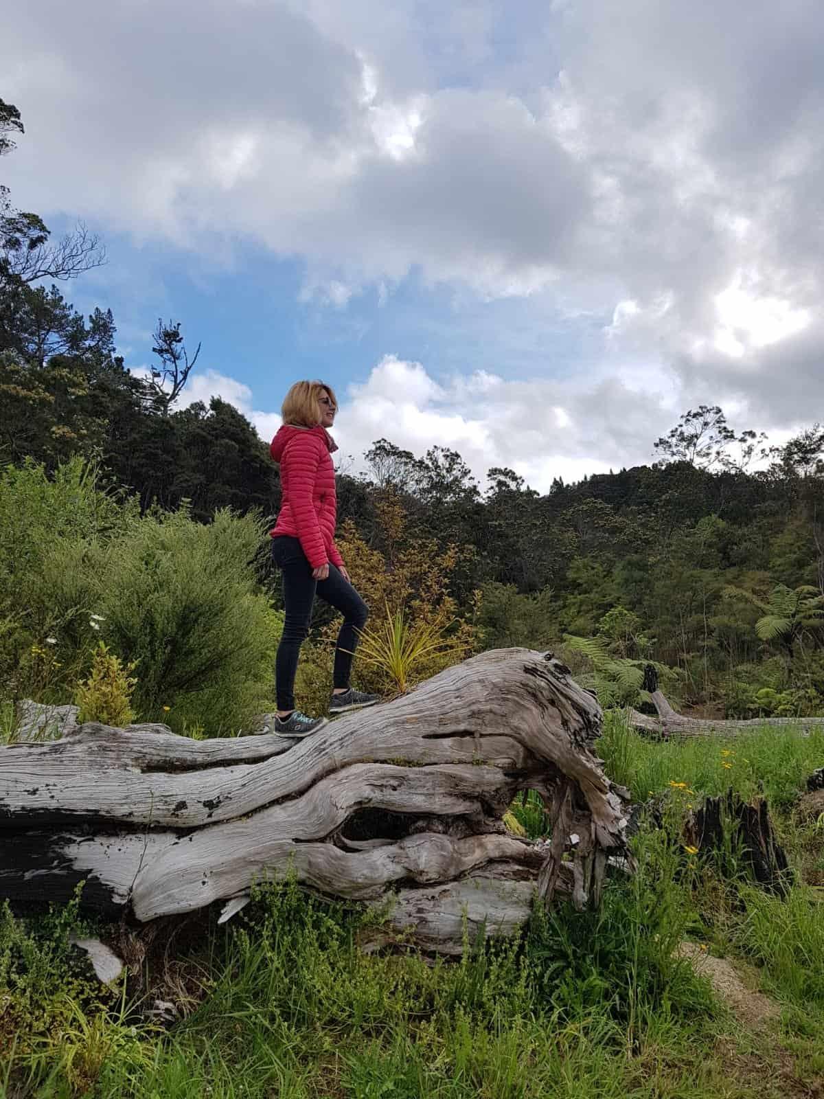 Nouvelle-Zélande, une semaine de HelpX chez la reine Lucy 👑 14