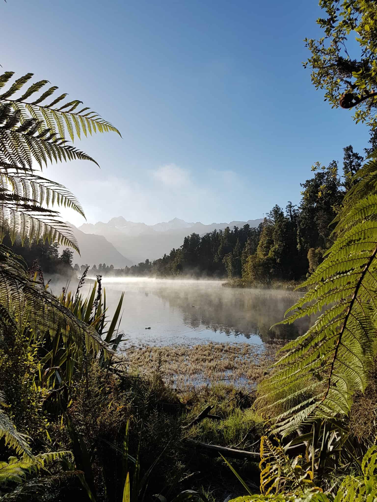 Nouvelle-Zélande, un levé de soleil féerique sur le lac Matheson ☀️ 18