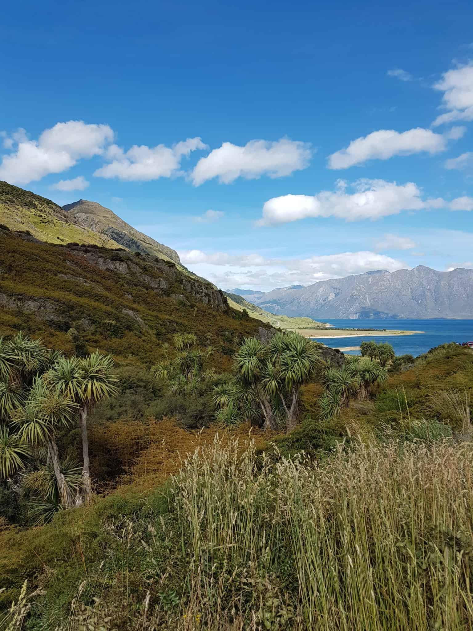 Nouvelle-Zélande, la sublime route de Wanaka entre lacs et montagnes 😍 19