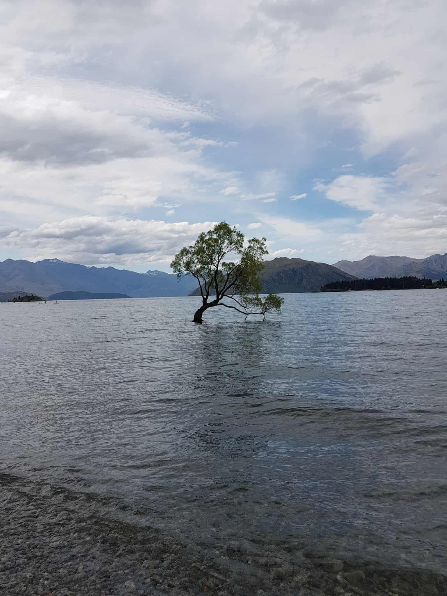 Nouvelle-Zélande, Wanaka notre ville coup de coeur ❤ 11