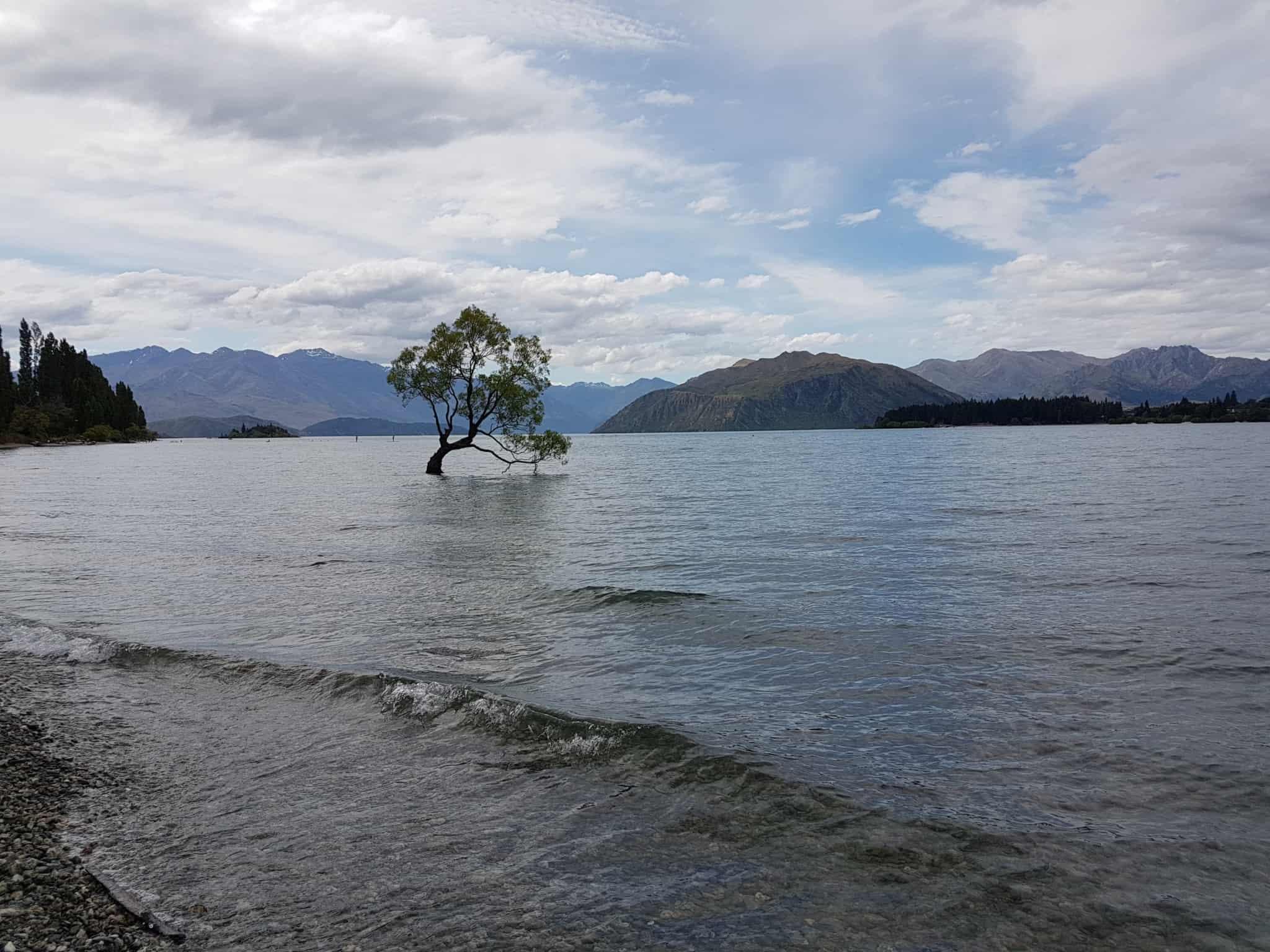 Nouvelle-Zélande, Wanaka notre ville coup de coeur ❤ 10