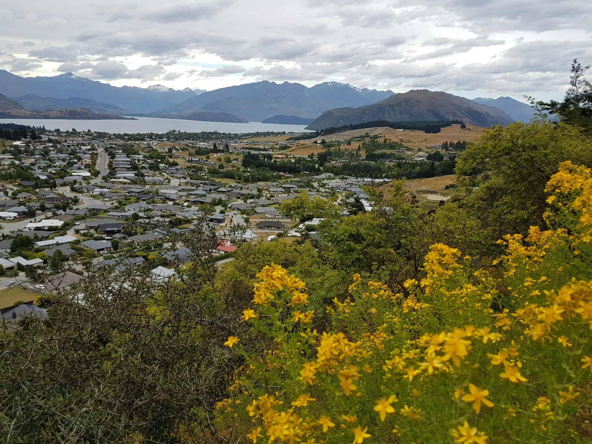 Nouvelle-Zélande, Wanaka notre ville coup de coeur ❤ 29