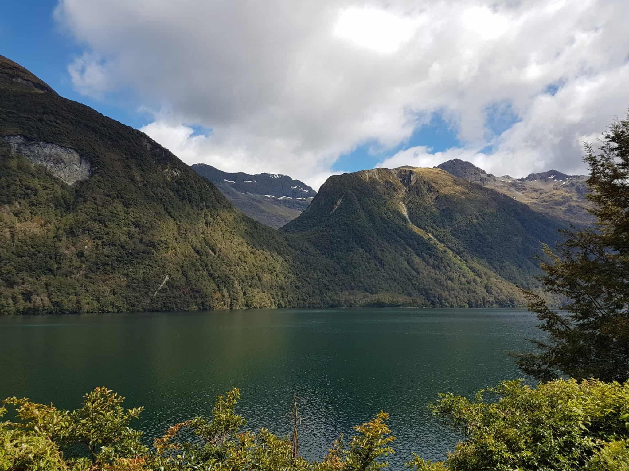 Nouvelle-Zélande, magnifique tour en bateau au coeur du Milford Sound ⛴ 5