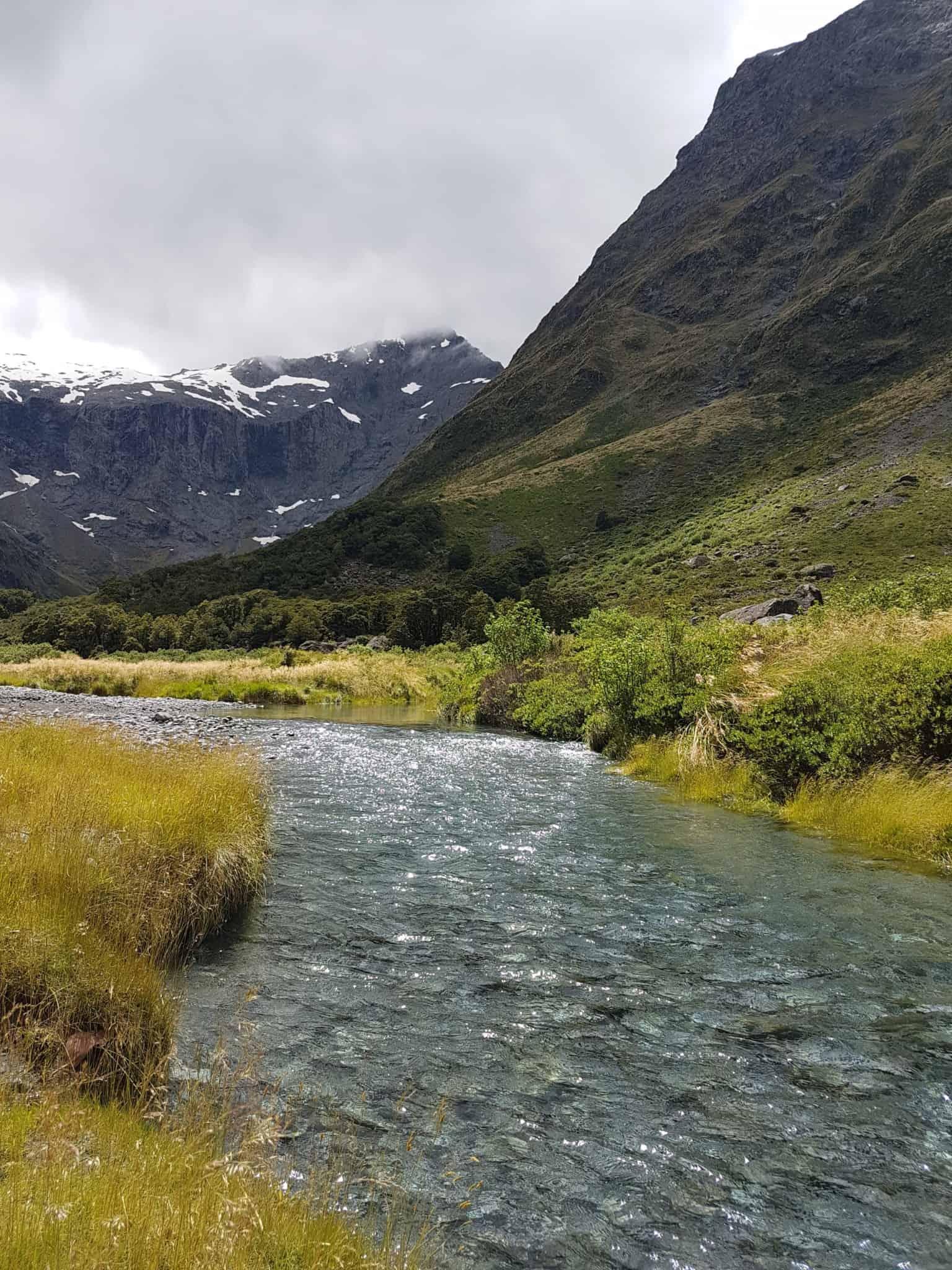 Nouvelle-Zélande, magnifique tour en bateau au coeur du Milford Sound ⛴ 9