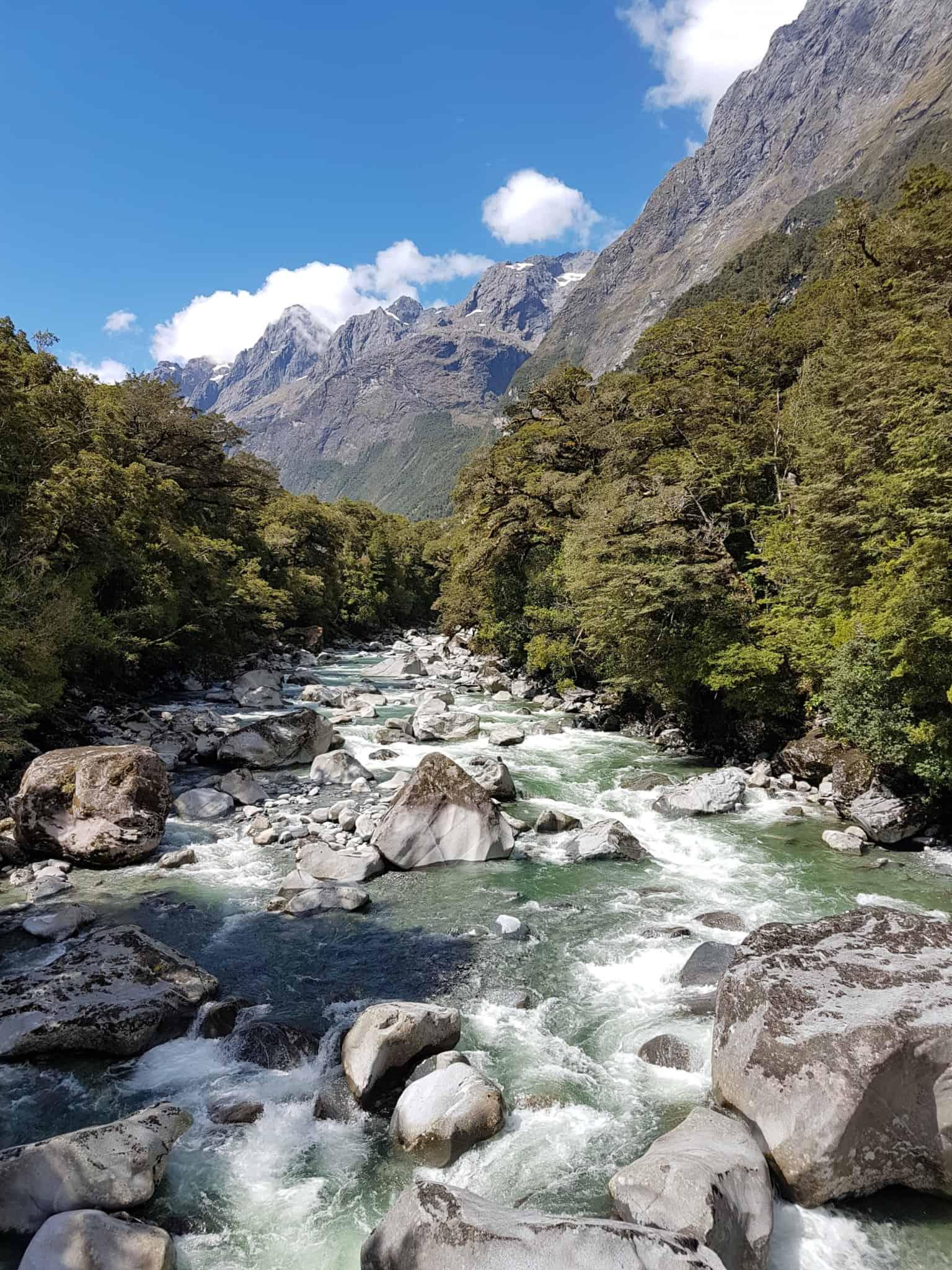 Nouvelle-Zélande, magnifique tour en bateau au coeur du Milford Sound ⛴ 12