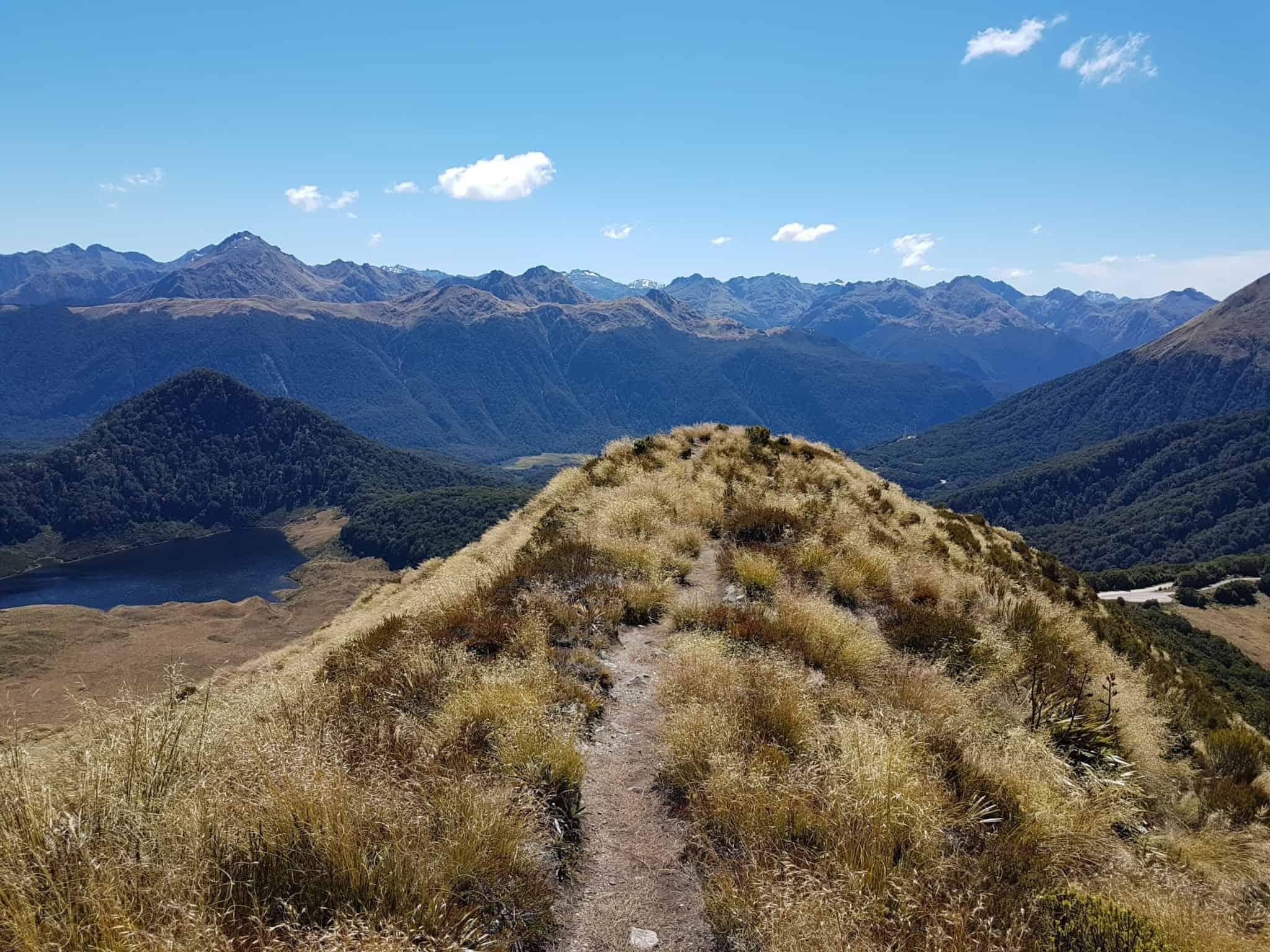 Nouvelle-Zélande, la Mount Burns Tarns Track une rando hors des sentiers battus 👟 9