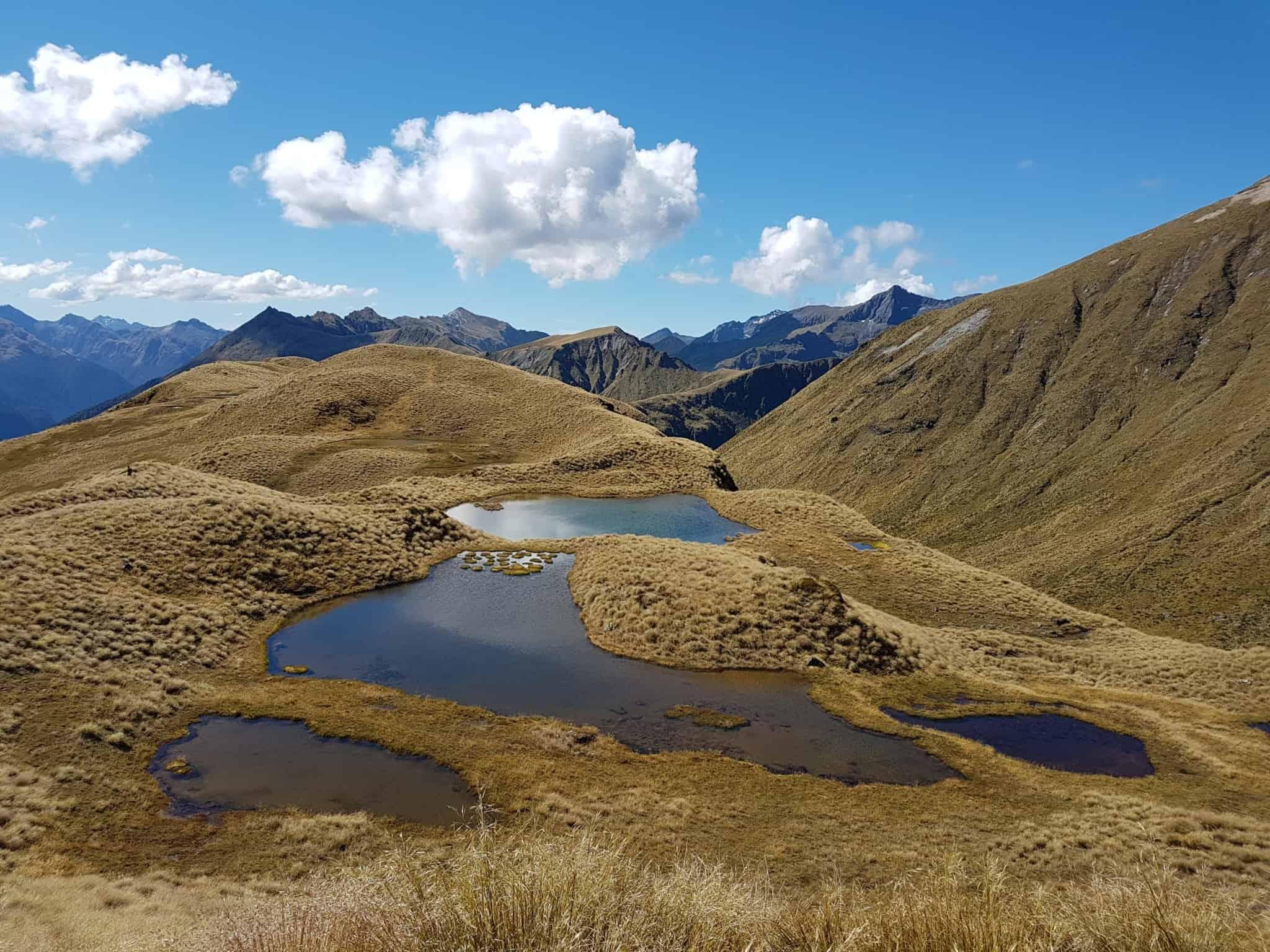 Nouvelle-Zélande, la Mount Burns Tarns Track une rando hors des sentiers battus 👟 15