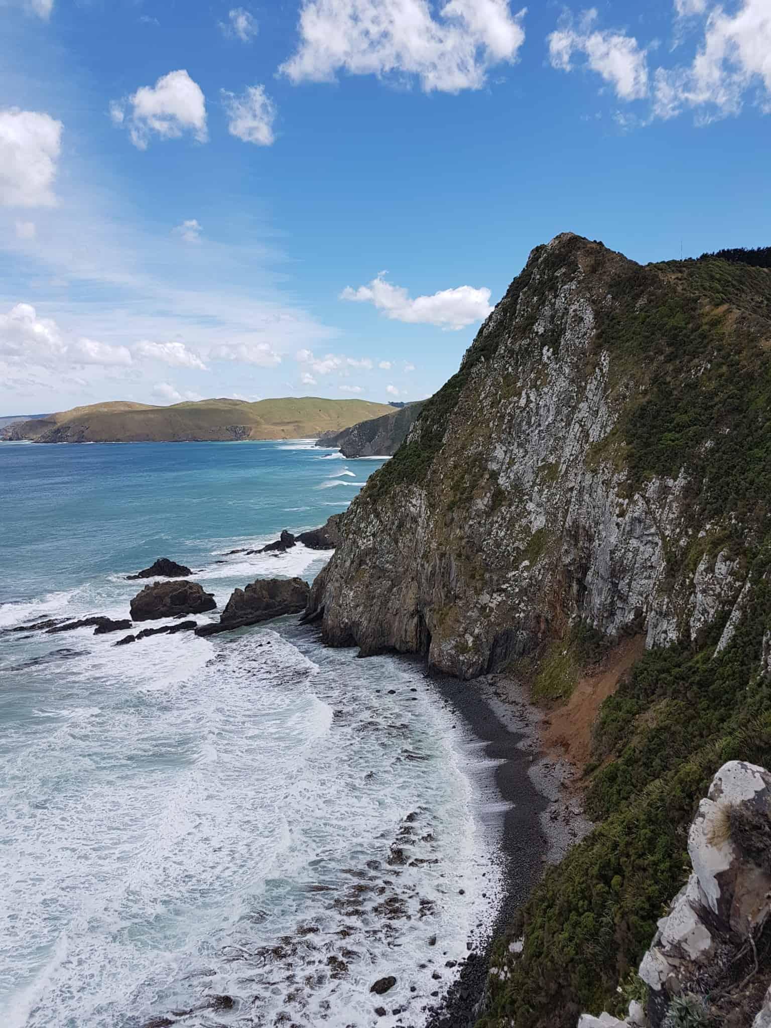 Nouvelle-Zélande, rencontre avec les pingouins aux yeux jaunes 🐧 22