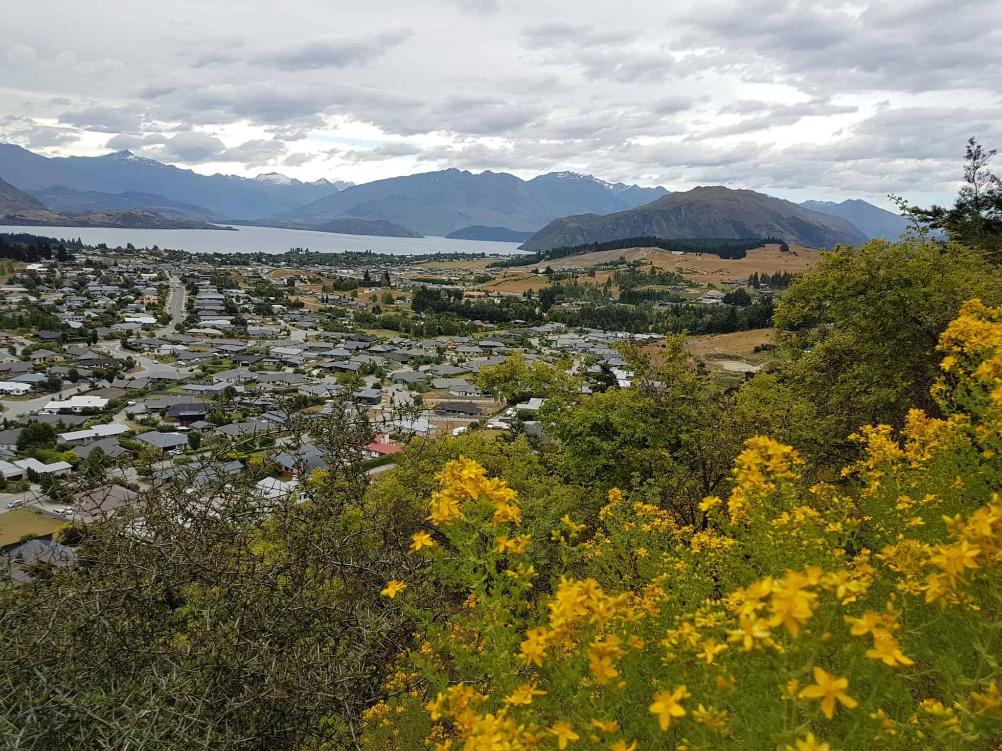 paysage de Nouvelle-Zélande