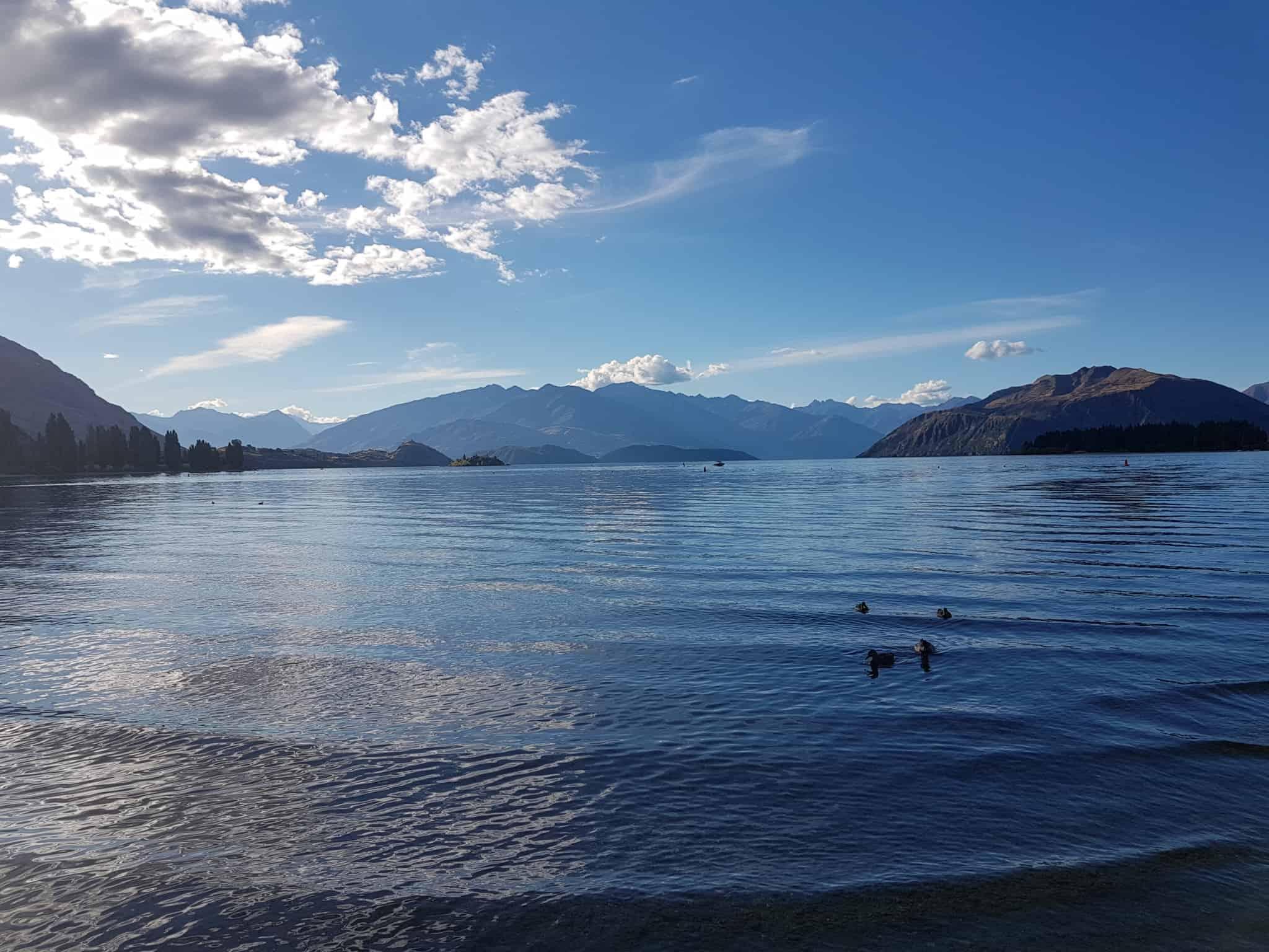 Nouvelle-Zélande, trois mois de douceur de vivre à Wanaka 🌞 9