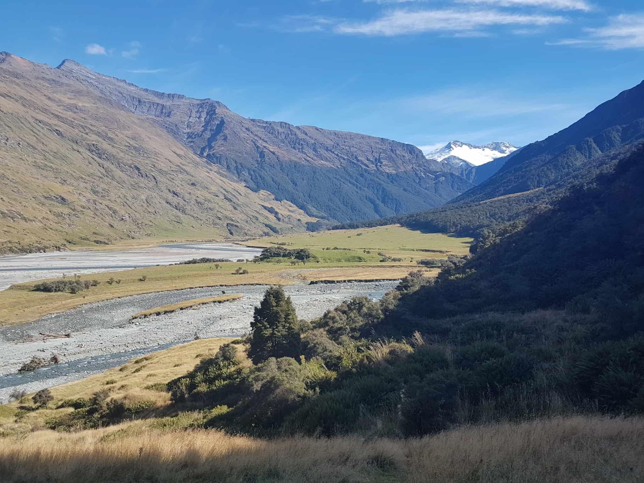 Nouvelle-Zélande, randonnée vers le Rob Roy Glacier et son sommet enneigé ❄ 7