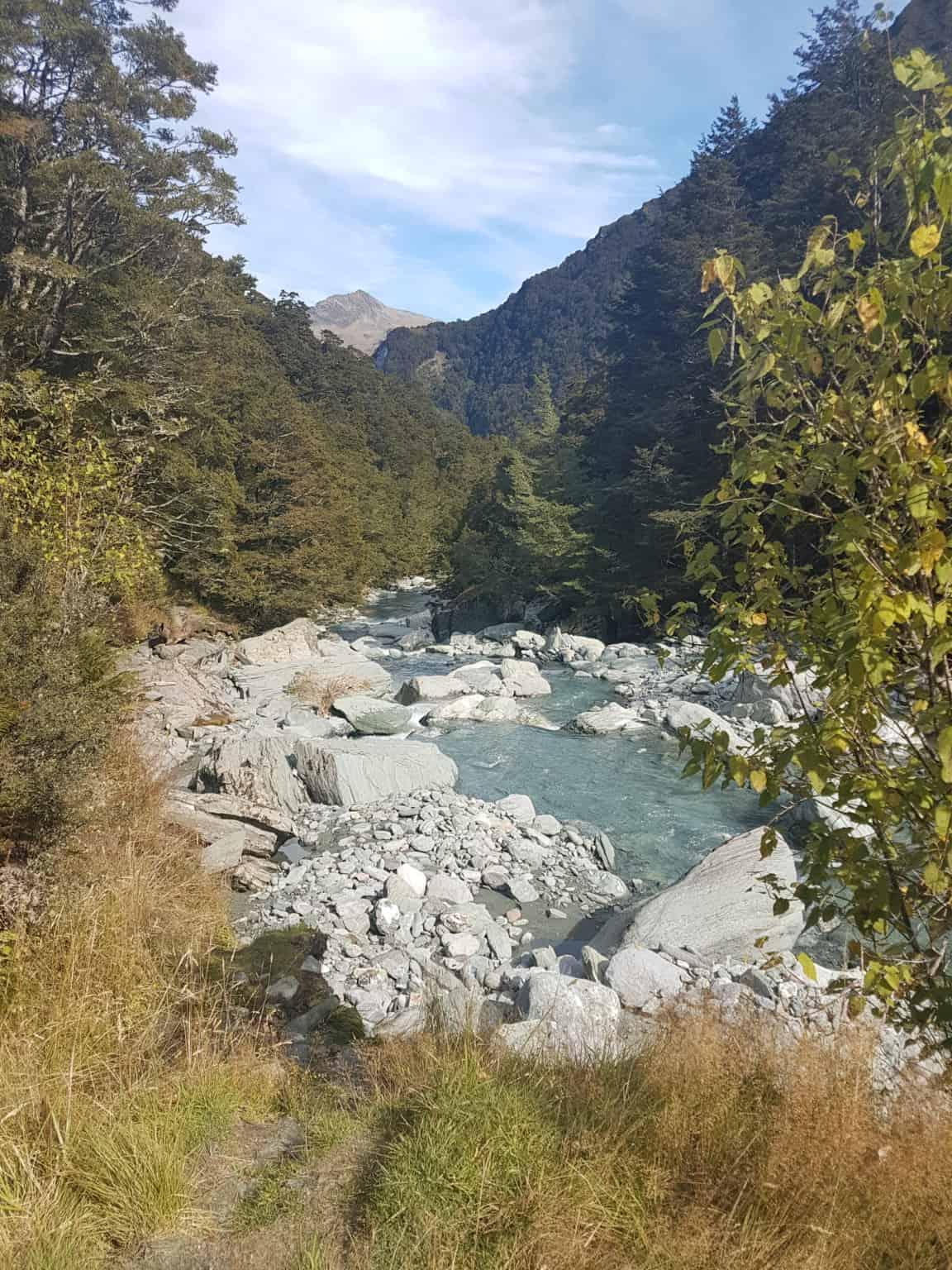 Nouvelle-Zélande, randonnée vers le Rob Roy Glacier et son sommet enneigé ❄ 12