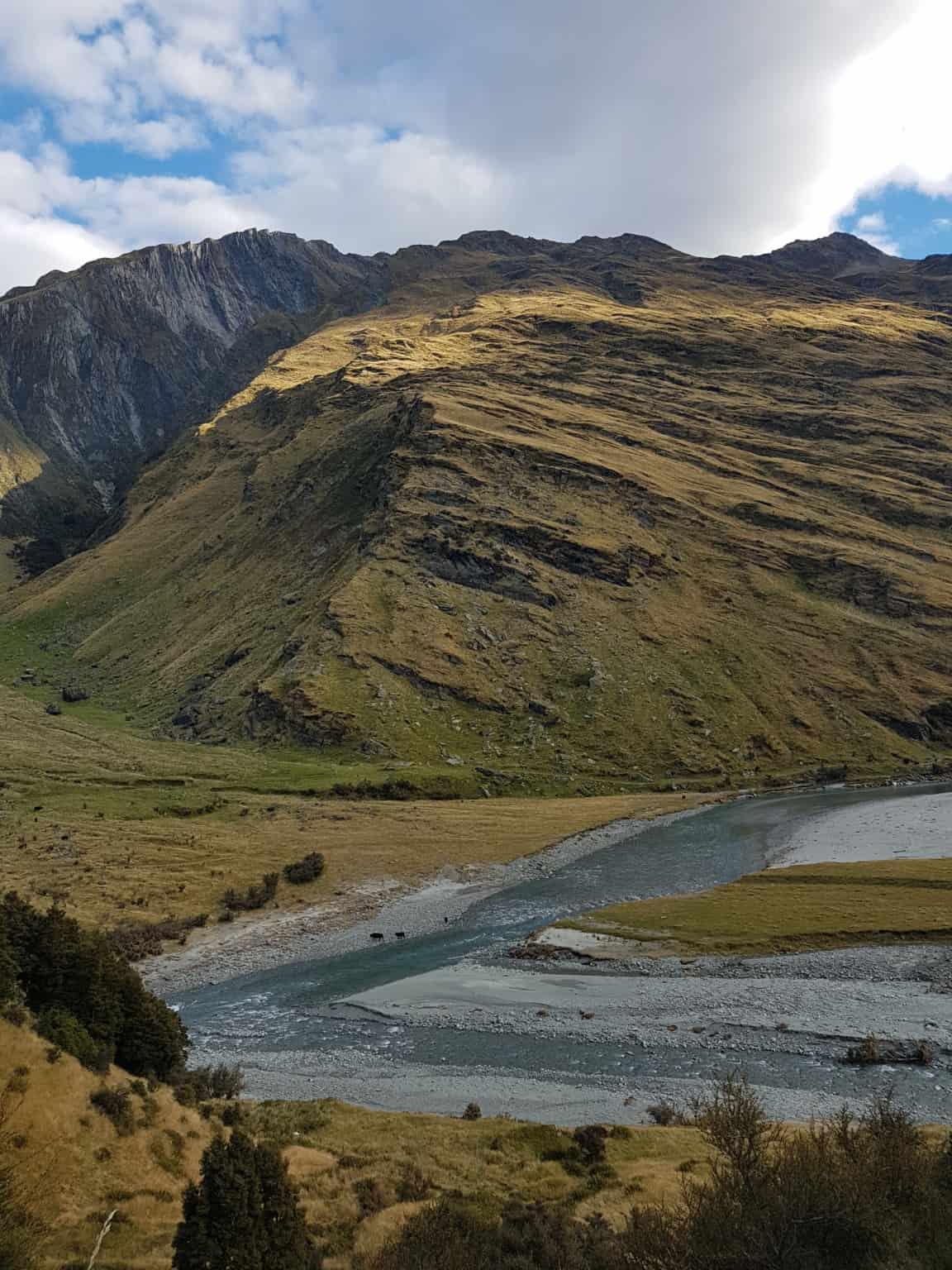 Nouvelle-Zélande, randonnée vers le Rob Roy Glacier et son sommet enneigé ❄ 20