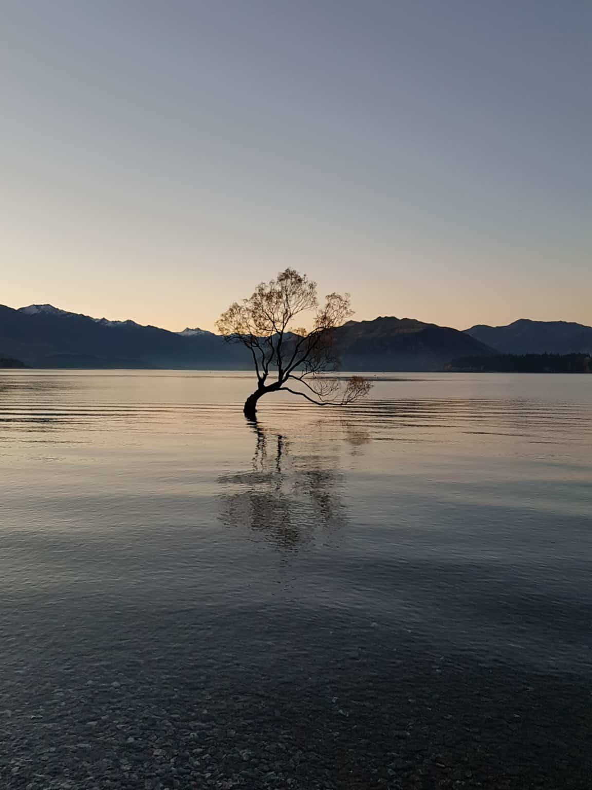 Nouvelle-Zélande, trois mois de douceur de vivre à Wanaka 🌞 12
